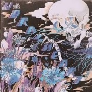 Shins - The Worms Heart