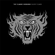 The Flaming Sideburns - Silver Flames