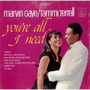 Marvin Gaye / Tammi Terrell - You're All Need