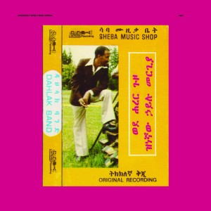 Hailu Mergia and Dahlak Band - Wede Harer Guzo