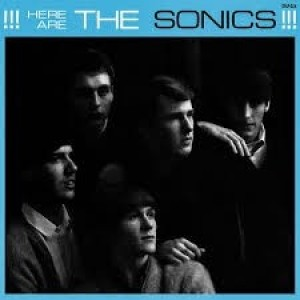 Sonics - Here Are The..