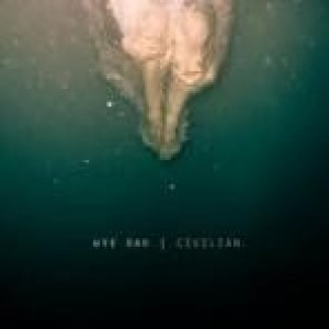 Wye Oak - Civilian