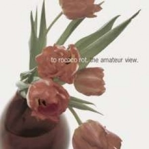To Rococo Rot - The Amateur Viev