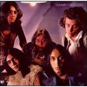 Flaming Groovies - Flamingo